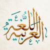 دورة اللغة العربية ( المهارات الهجائية والمهارات اللغوية ) للمرحلة الابتدائية